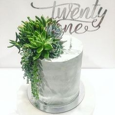 Concrete finish, succulents and silver mirror topper = perfection! Gorgeous job…