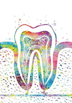 Teeth Names in Human Mouth (Types, Function, Dental treatments, Etc) Dentist Art, Teeth Dentist, Gifts For Dentist, Dental Assistant, Dental Hygienist, Dental Care, Dental Wallpaper, Medical Art, Medical Dental