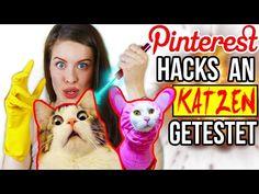 KRASSE PINTEREST HACKS AN KATZEN LIVE GETESTET!  LIFE HACKS im TEST | DIY CAT & HUNDE LIFEHACKS -…