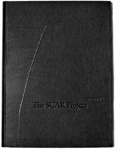 The SCAR Project: Breast Cancer Is Not a Pink Ribbon.  (Volume I)    Hardcover. 126 pages containing 50 portraits of young breast cancer survivors, as well as an autobiographical sketch by each woman, describing her experience with breast cancer. The SCAR Project is an exhibition of large-scale portraits of young breast cancer survivors shot by fashion photographer David Jay.