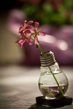 Lightbulb Vase Wedding Decoration