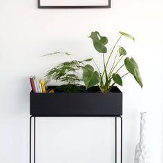 ferm LIVING plant box: http://www.fermliving.com/webshop/shop/news-living-aw15/plant-box-black.aspx