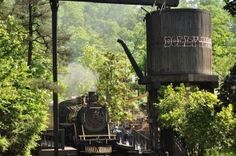 The Dollywood Express pulling into the station.