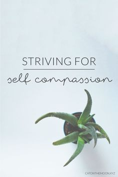 Striving For Self Compassion | Simple Mondays at Cat On The Moon - A thoughtful style blog for a simple life. How can you find self-compassion while building your capsule wardrobe? Or your own blog? Or just in changing your everyday habits?