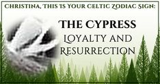 Which Tree Is Your Protector According To Celtic Faith?