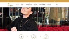 Seoweb Seco SRL, firma care  dezvolta si construieste aplicatii si pagini web, dezvolta si implementeaza strategii Internet comunicate de presa