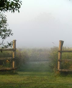 that bit of fog and mist Beautiful World, Beautiful Places, Beautiful Pictures, Country Life, Country Roads, Country Charm, Country Living, Lifestyle Fotografie, Farm Life