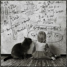 Heartwarming Friendship Between a Girl and Her Cat - Andy Prokh