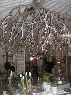 a glamorous cozy way to light especially large rooms & eco friendly lighting chandelier 22 DIY Ideas For Rustic Tree Branch Chandeliers If you are a rustic style lover then you will definitely like this creative DIY Chandeliers made fro Branch Chandelier, Outdoor Chandelier, Outdoor Lighting, Lighting Ideas, Rustic Chandelier, Lighting Design, Thanksgiving Table Settings, Thanksgiving Decorations, Kids Thanksgiving