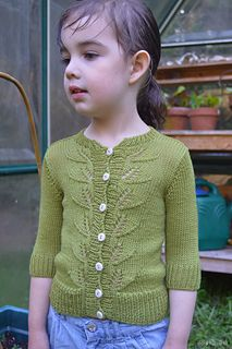 Ravelry: Berry Season Cardigan pattern by Heidi Atwood-Reeves