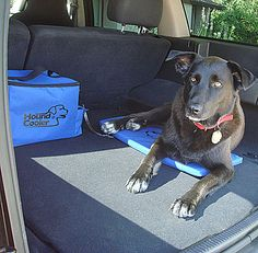 Akoma Hound Cooler -- a great way to keep your dog cool when in the car