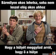 Szerintem ne is próbálkozz vele :) Vicces képek #humor #vicces #vicceskep #vicceskepek #humoros #vicc #humorosvideo #viccesoldal #poen #bikuci Bad Memes, Gentleman, Funny Jokes, Haha, Clever, Comedy, Poems, Funny Pictures, Quotes