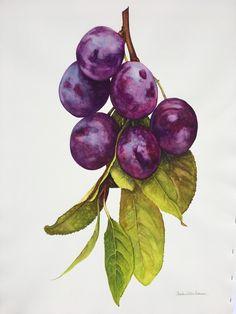 New fruit painting watercolour Ideas Watercolor Fruit, Easy Watercolor, Abstract Watercolor, Watercolor Illustration, Watercolor Flowers, Tattoo Watercolor, Watercolor Animals, Watercolor Background, Watercolor Landscape
