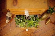 Succulent drawer for decor | Bloom Photography www.bloomaustin.com | Mercury Hall | Austin, TX | #wedding