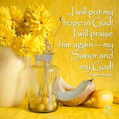 I will put my hope in God! I will praise him again — my Savior and my God! - Psalm 43:5b ‪