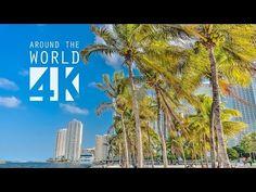 ▶ Miami in 4K - YouTube