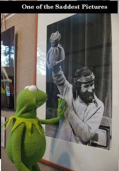 Jim Henson and Kermit Sapo Meme, Sesame Street Muppets, Fraggle Rock, The Muppet Show, Sad Pictures, Kermit The Frog, Sad Stories, Jim Henson, Faith In Humanity