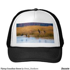 Flying Canadian Geese
