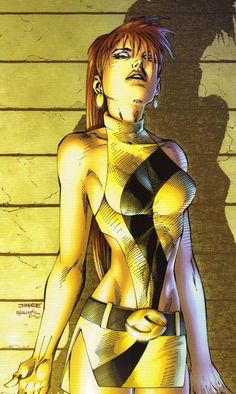 Silk Spectre by Jim Lee and Scott Williams Dc Comics Heroes, Arte Dc Comics, Bd Comics, Manga Comics, Comic Books Art, Comic Art, Cosplay Games, Jim Lee Art, Catwoman