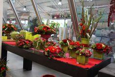 Rode snijbloemen