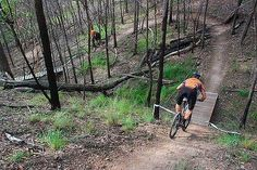 #trails #mountain biking