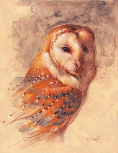 Ezra Tucker - Barn Owl                                                                                                                                                                                 More