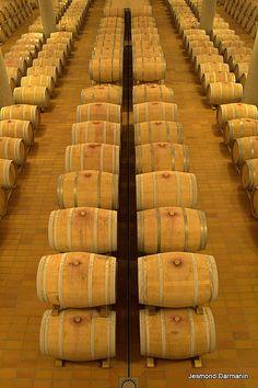 Donnafugata wine cellars in Sicily Ragusa