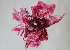 watercolour.  William Suran