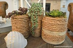 DIY Succulent Vases for artificial plants