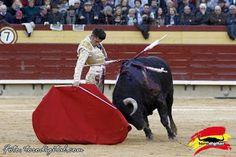 torodigital: Alejandro Talavante abrió la puerta grande en la ...