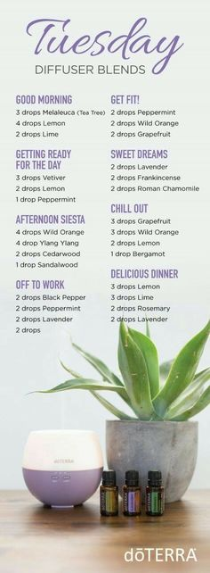 Welcome to my doTERRA Diffuser Blends index. There is basically an unlimited number of ways to use doTERRA essential oils. Essential Oil Diffuser Blends, Essential Oil Uses, Young Living Essential Oils, Humidifier Essential Oils, Elixir Floral, Diffuser Recipes, Aromatherapy Oils, Doterra Essential Oils, Doterra Blends