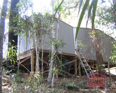 Ron builds his sheds on stilts to match his Forest home! Forest House, Sheds, Building, Garden, Projects, Plants, Home, Design, Shed Houses