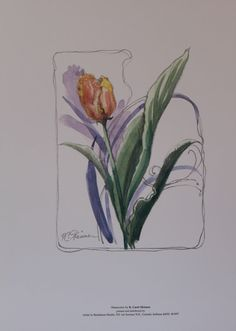 1997 print Orange Tulip 4 of 4 in the Four by UglyDucklingAntiques, $12.50