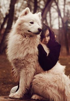 Photograph Dreaming by Raphaelle Monvoisin on Foto Fantasy, Wolves And Women, Girl And Dog, Service Dogs, German Shepherd Dogs, Dog Photos, Spirit Animal, Dog Life, Animal Photography