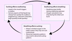 The interrelationship of sucking, swallowing and breathing in infant feeding, adapted from Wolf and Glass p45.