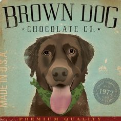 Brown Dog Chocolate Company graphic art on gallery wrapped canvas by stephen Fowler Art Et Illustration, Illustrations, Chocolate Company, Chocolate Labs, Square Canvas, Brown Dog, Big Brown, Dog Art, Decoration