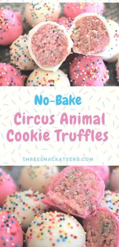 No-Bake Circus Animal Cookie Truffles No-Bake Circus Animal Cookie Truffles Making sweet treats doesn't need to turn your kitchen into a zoo. All you need are 5 simple ingredients to create these adorable No-Bake Circus Animal Cookie Truffles. Dessert Party, Bon Dessert, Oreo Dessert, Dessert Table, Appetizer Dessert, Dessert Food, Birthday Party Treats, Snacks Für Party, Party Fun
