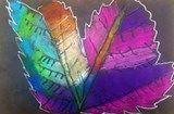 2nd Grade Pastel Leaf