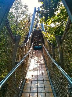 Canopy Walk in PA