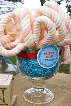 The Party Wagon - Blog - FROGS AND SNAILS AND PUPPY DOGTAILS