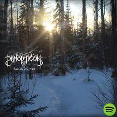 Best Heavy Metal Albums of Panopticon - 'Roads To The North' (Bindrune) Best Heavy Metal, Cool Album Covers, Metal Albums, Death Metal, Lp Vinyl, Skull Art, Black Metal, Cool Things To Buy, Pure Products