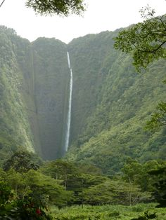 "Waterfall @ Waipio Valley - ""The Big Island"" of Hawaï"