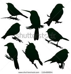 Vector silhouettes of birds for your design - stock vector