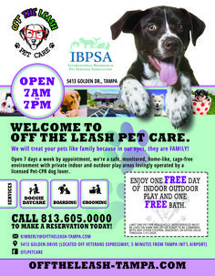 Custom flyer for doggie daycare and boarding company Service Awards, Custom Flyers, Dog Daycare, Pet Care, Your Pet, Graphic Design, Creative, Visual Communication