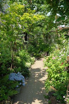 「私の庭・私の暮らし」人気インスタグラマーの素敵な庭 群馬県・山中邸 | GardenStory (ガーデンストーリー) Shade Garden, Shades, Green, Nature, Plants, Gardening, Interior, Products, Naturaleza