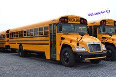 Toy School Bus, Bluebird Buses, Rv Bus, Buses For Sale, Busse, Blue Bird, Black N Yellow, Meme, The Originals
