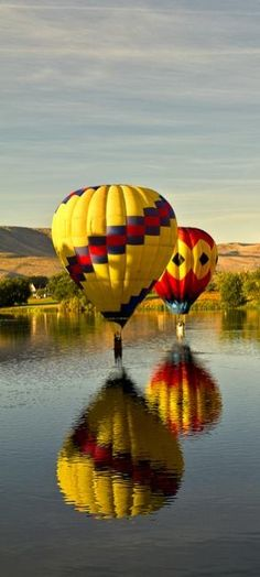 Up, up and away, photo by Allen Brooks - Pixdaus