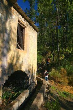 Antiguo molino de agua - Nechite - Granada (Spain)