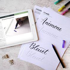 Noëlie | Calligraphique (@calligraphique) • Photos et vidéos Instagram Lettering, Photos, Instagram, Modern Calligraphy, Welcome, Fishing Line, Atelier, Pictures, Drawing Letters