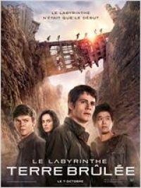 télécharger Le Labyrinthe : La Terre brûlée